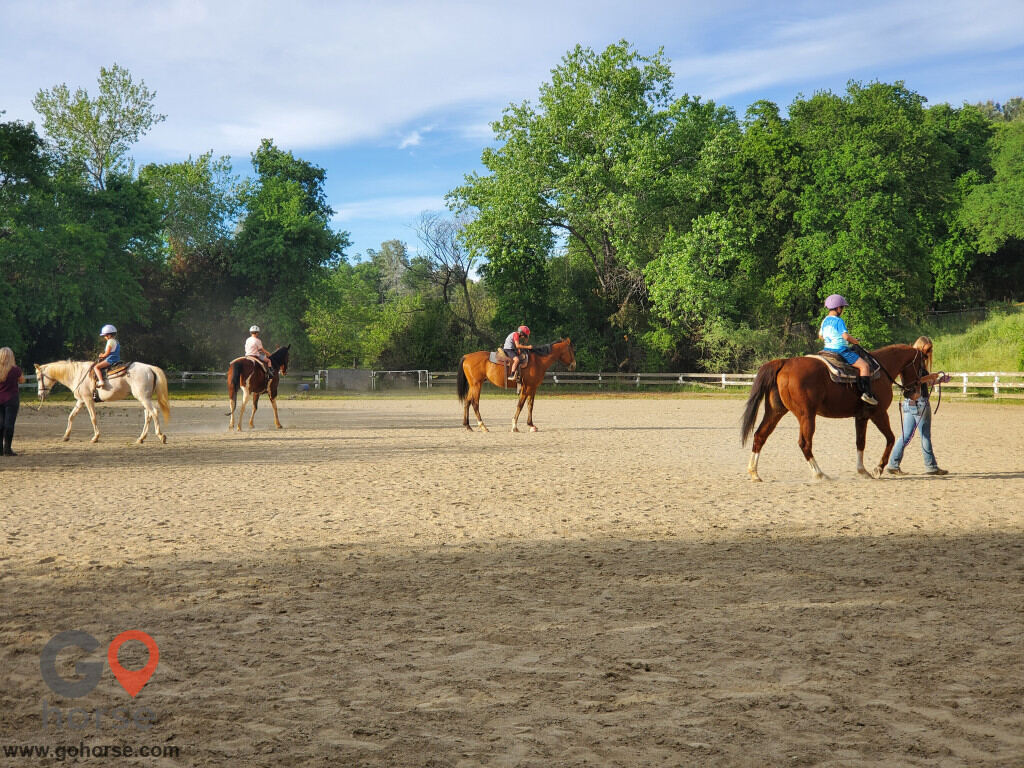 Boyko Ranch Horse stables in Shingle Springs CA 2