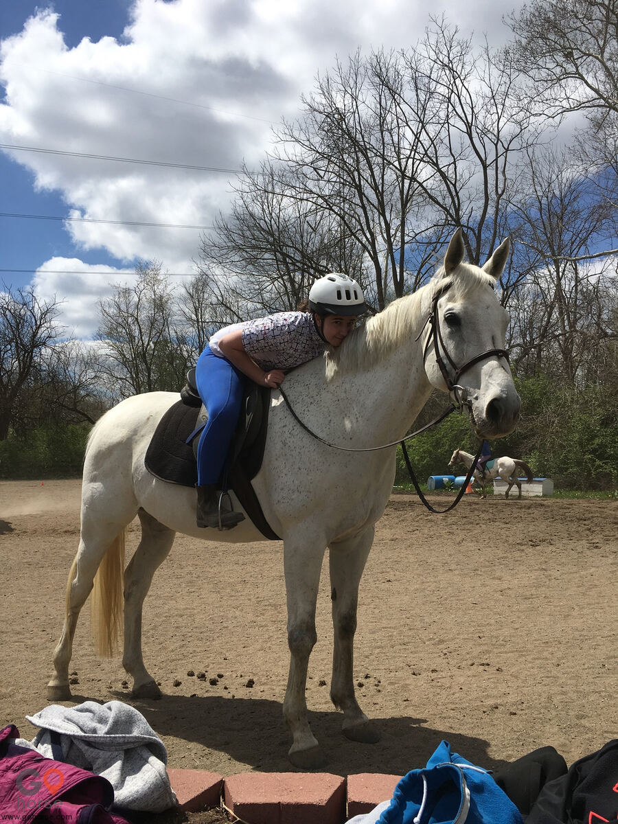 Southport Equestrian Center Horse stables in Indianapolis IN 10