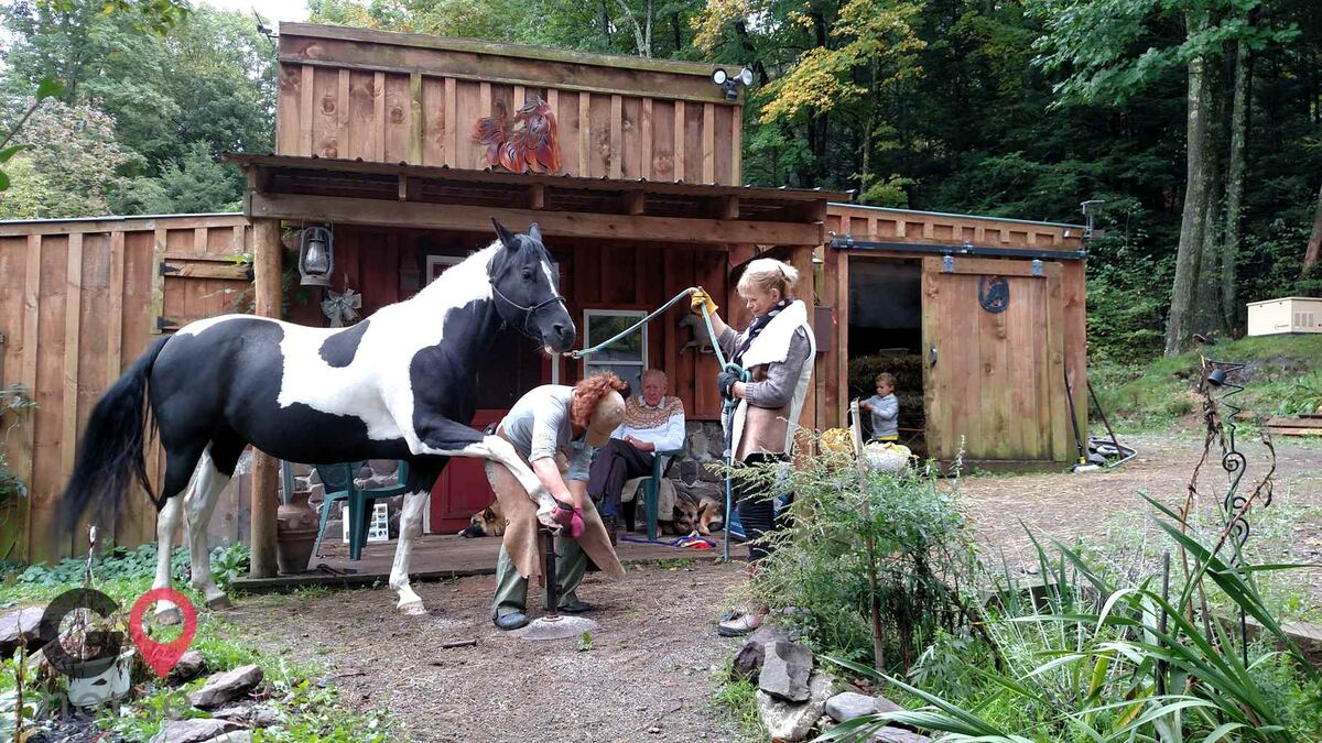 Timber Creek Stables Farrier in Cresco PA 3