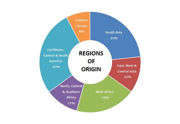 Chart showing what regions the Libertas Center patients originate from (CREDIT: Libertas Center) 2018