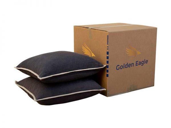 Golden_eagle_moving_shopping