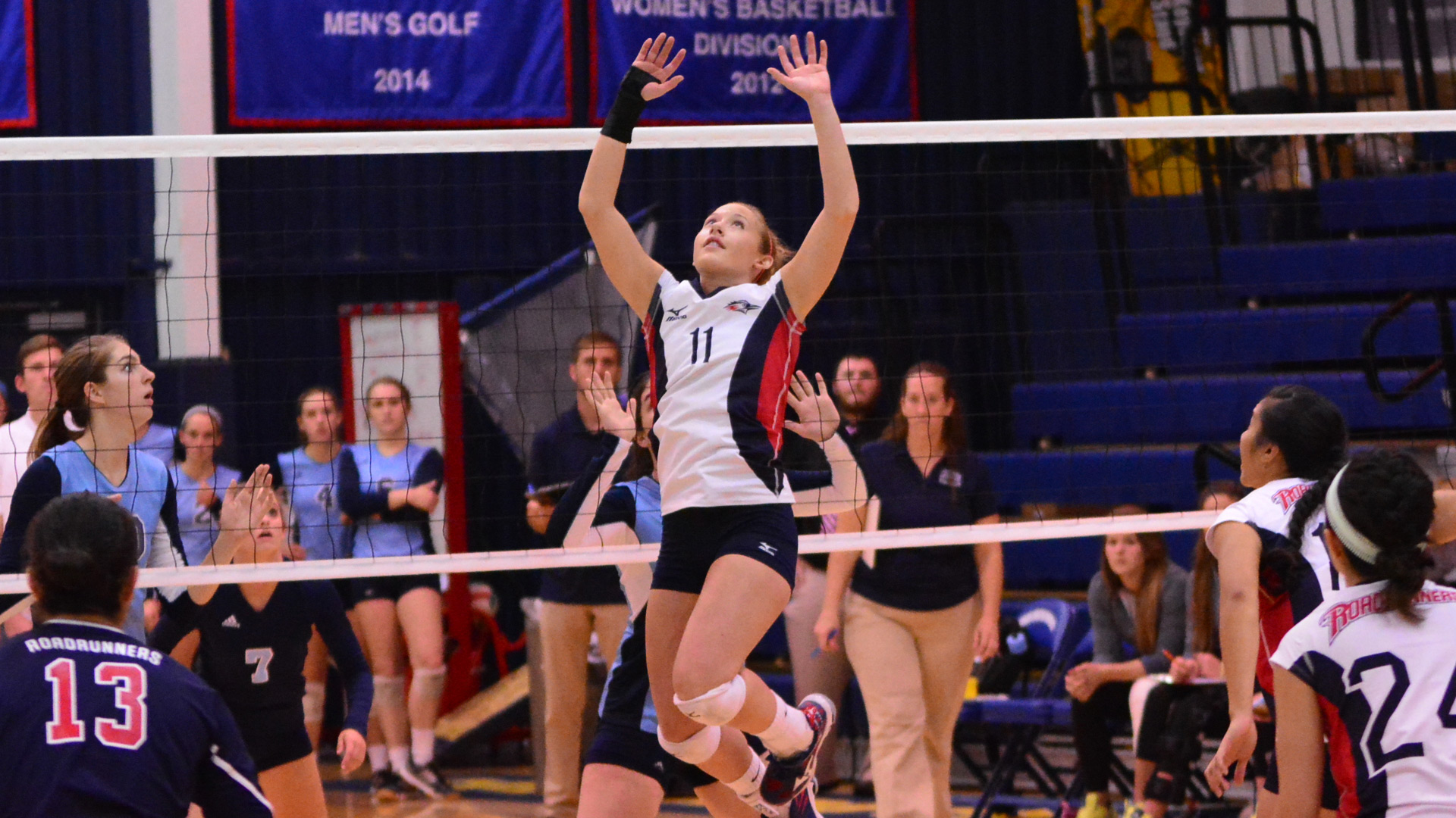 volleyball torr named rmac setter of the week metropolitan state
