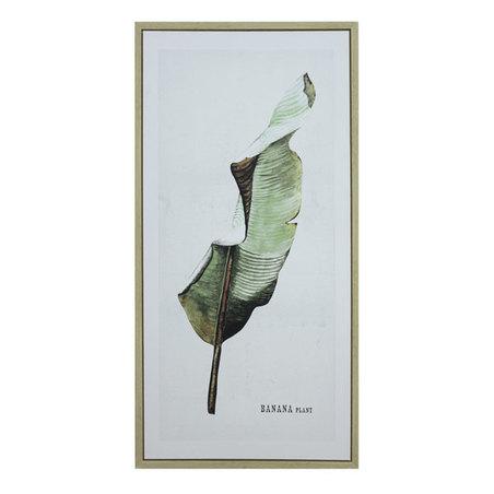tela impressa c/ mold folhas banana plant 120x60x3cm