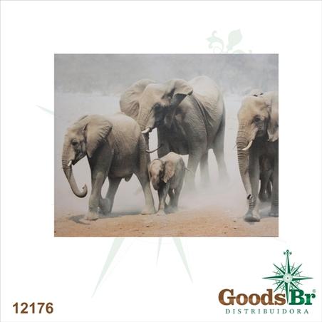 tela impressa elefantes africa  80x100x4cm