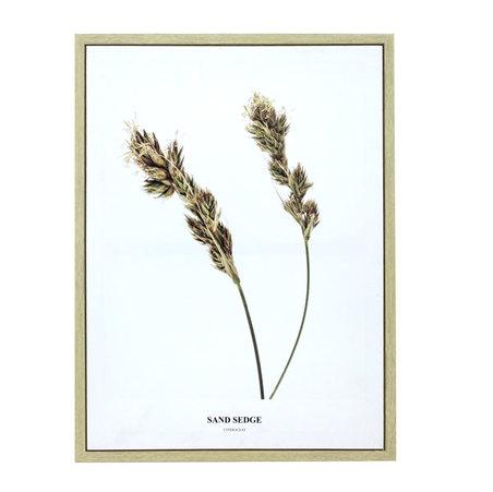 tela impressa c/ mold folhas sand  80x60x3cm