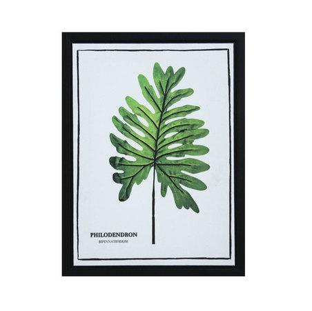 tela impr c/ mol folhas philodendron  40x30x2,5cm