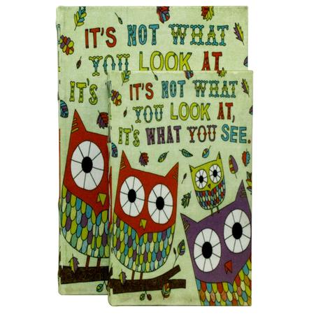 -book box cj 2pc corujas coloridas  27x18x7cm