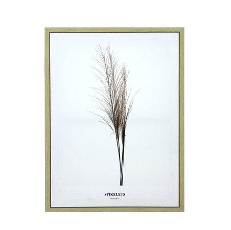 tela impressa c/ mold folhas spikelets  80x60x3cm