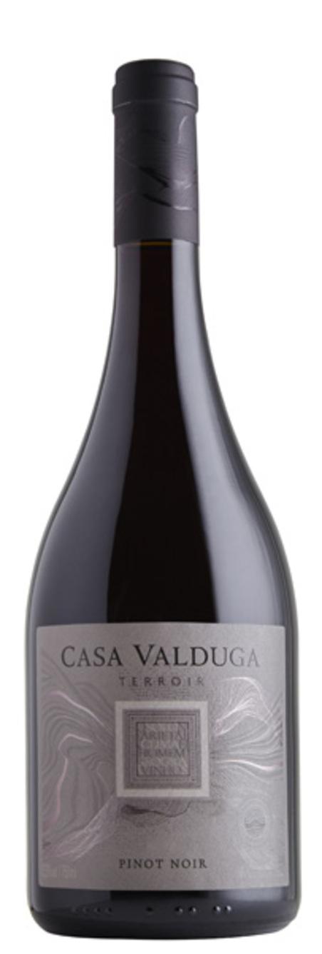 vinho terroir pinot noir tinto seco750ml