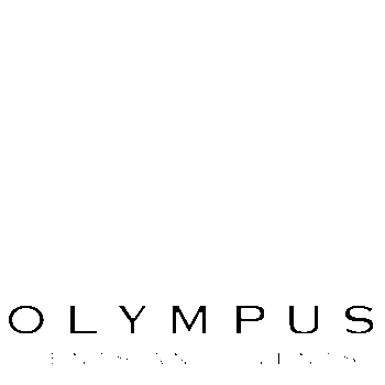 Profile Image of Olympus Tents and Events