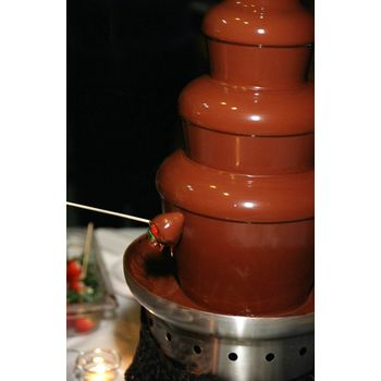 Profile Image of The Chocolate Chick -  Chocolate Fountain Rentals