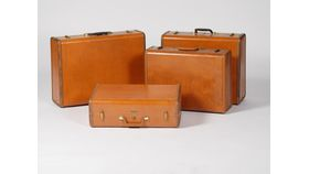Image of a Benjamin Luggage (Large)