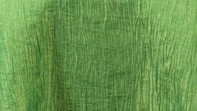 Image of a Apple Crinkle Taffeta Pillowcases