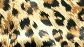 Image of a Cheetah Satin Pillowcases