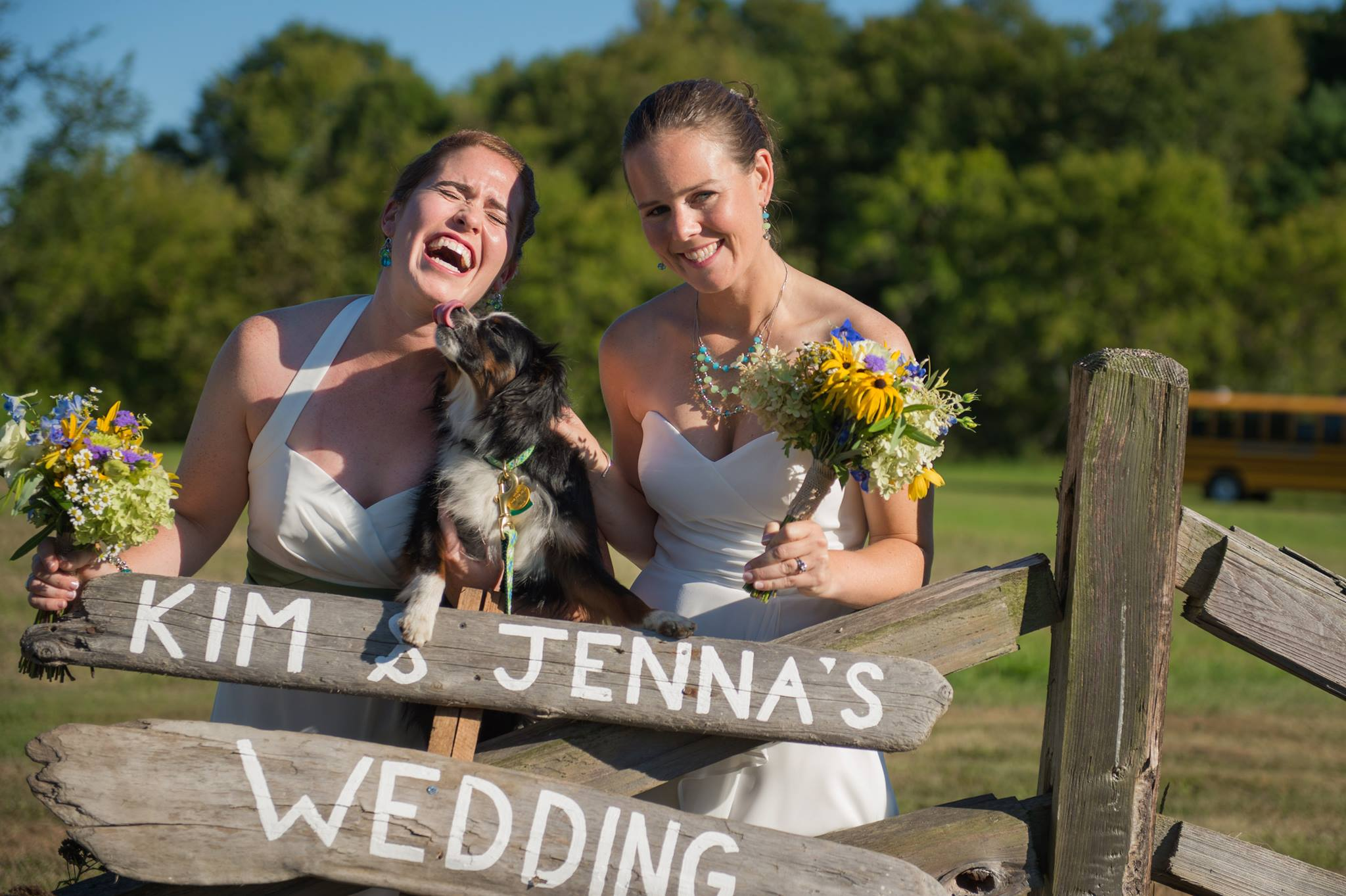 How to Include Your Dog(s) in Your Wedding