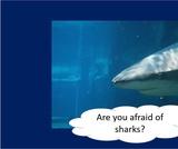 BrainVentures Sharks K-2