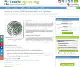 DNA Forensics and Color Pigments