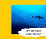 BrainVentures Sharks