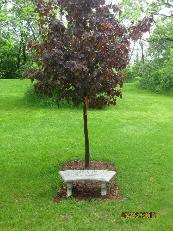 Brett's Tree planted in honor of him at Hilltop Golf Course