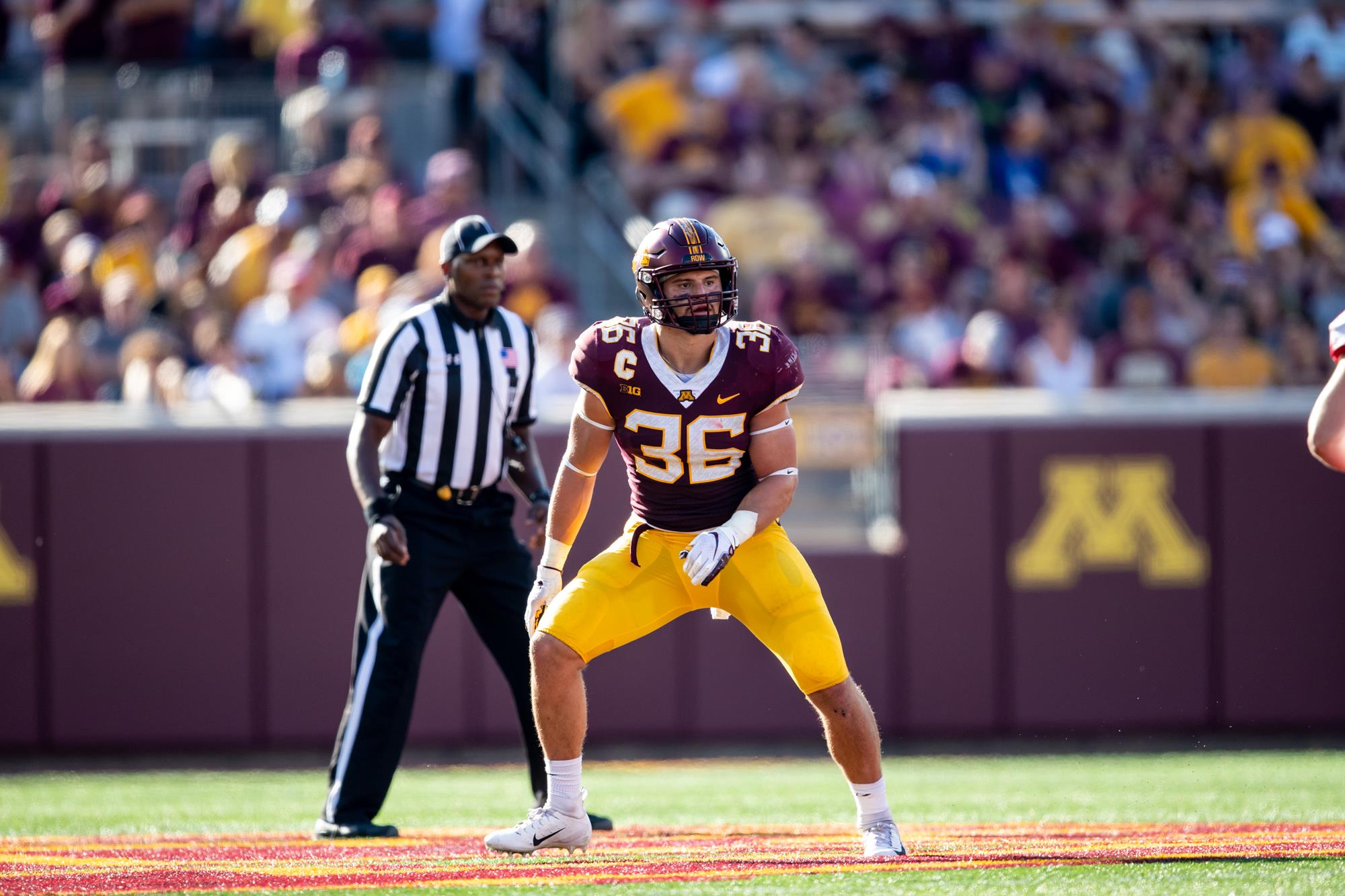 Image result for blake cashman lb minnesota