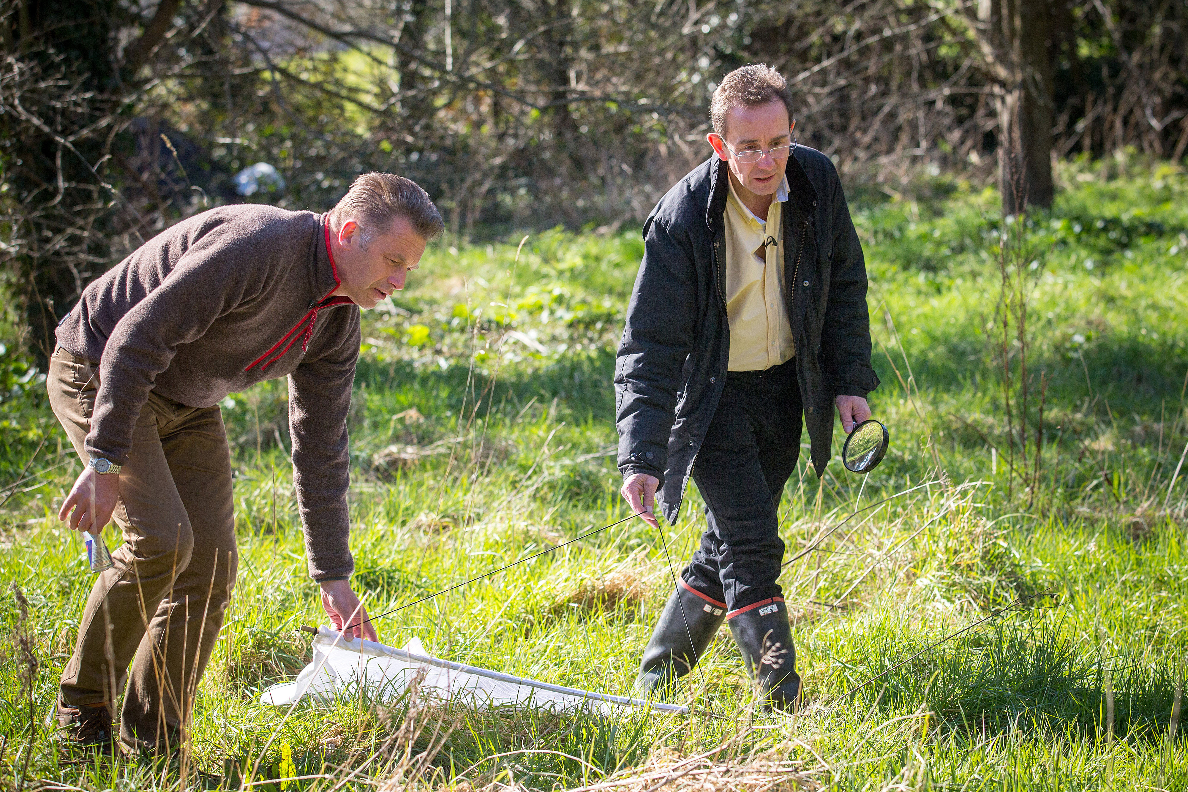SENT UNDER EMBARGOED FOR FIRST USE 16 MARCH 2016 00.01 Chris Packham and Prof Richard Wall, photographed as they search for ticks that have been infecting dogs in the Harlow area. See SWNS story SWTICK; Scientists are warning of the spread of the fatal dog tick disease babesiosis after 3 out of 4 infected canines died in an outbreak in Essex. The parasite, which affects thousands of dogs every year in France is extremely rare in the UK but now a massive survey of the bugs by wildlife expert Chris Packham has revealed for the first time that British dogs are in danger from the killer parasite. Presence of Babesia canis in UK raises need for surveillance says Big Tick Project leader Professor Richard Wall ? University of Bristol is currently analysing 1000s of ticks collected by veterinary practices as part of MSD Animal Health's Big Tick Project ? Big Tick Project study is mapping tick hotspots to identify disease risks. It is hoped that the results of the study will powerfully highlight the challenge that an increasing distribution and prevalence of ticks brings to human and animal health