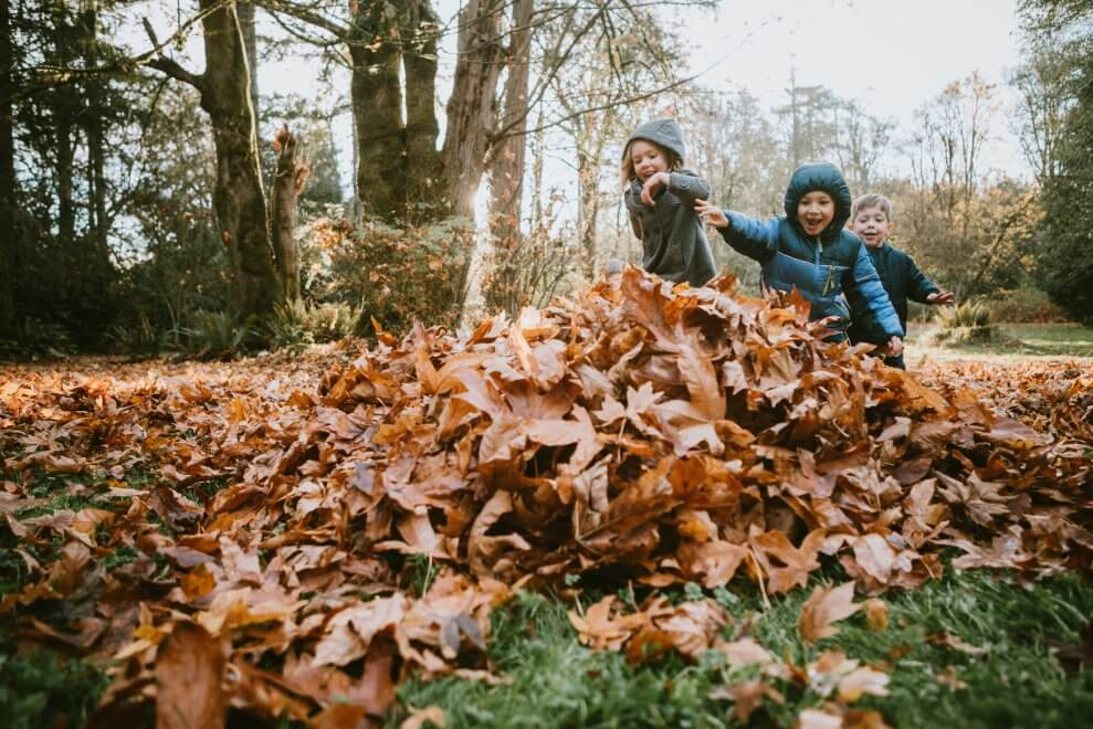 Why kids need active outdoor play, every day - Active For Life