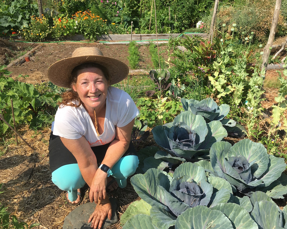 Gardens nourish body and soul during pandemic