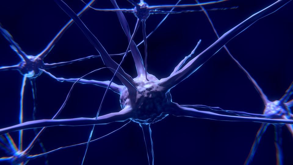 New type of T-cell identified as 'key player' in development of rheumatoid arthritis – Patient Talk