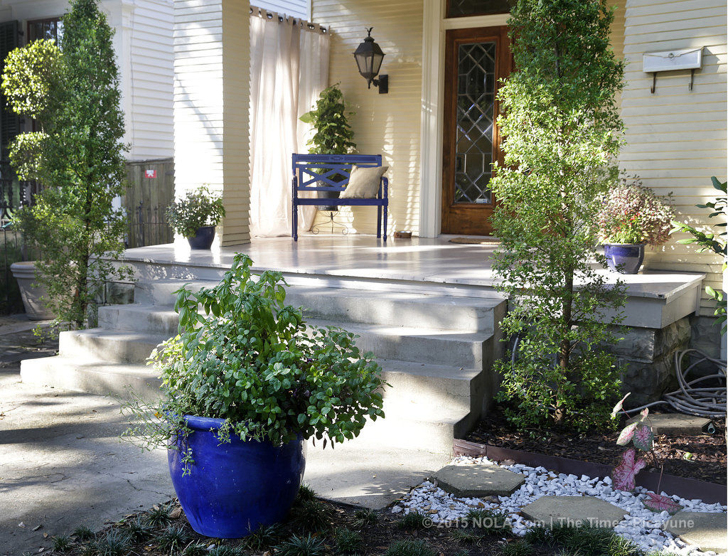 Want to stay cooler and cut your utility bills? Consider planting some shade trees