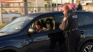 No More Warnings: Police Enforce Florida's No Texting While Driving Law