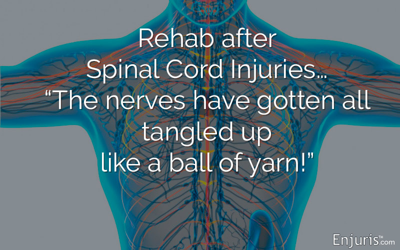 Rehabilitation and Therapy after Spinal Cord Injuries