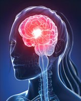 Grow New Brain Cells - Life Extension
