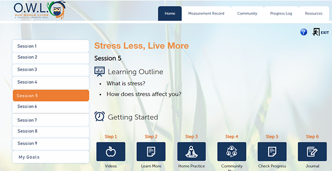 Electronic health toolkit brings nonopioid treatments to low-income chronic pain patients