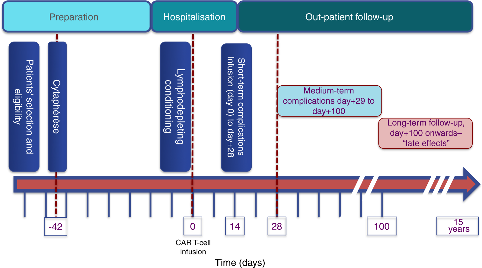 CAR T-cell therapy for the management of refractory/relapsed high-grade B-cell lymphoma: a practical overview