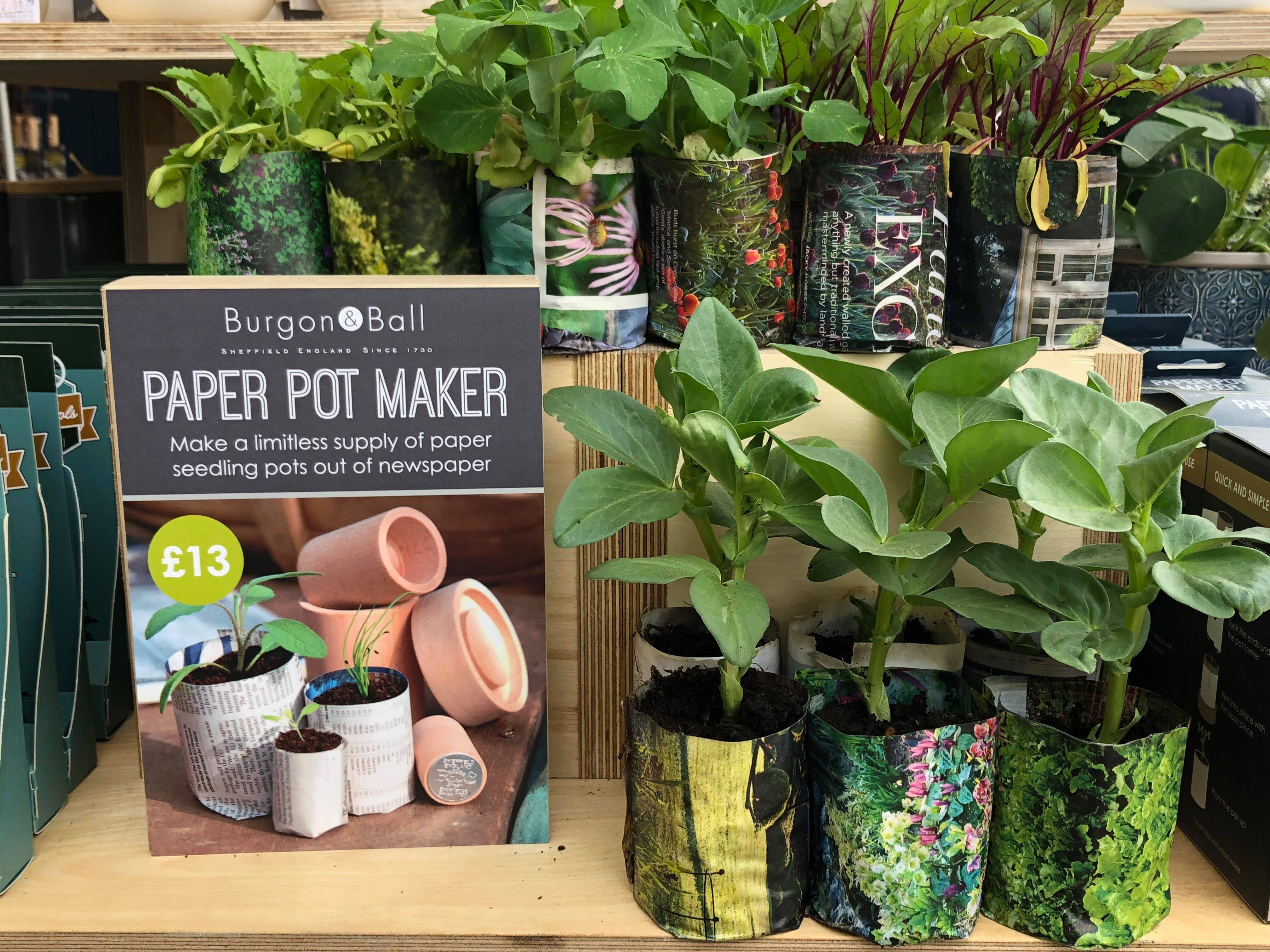 Grow Your Own Ideas From The Chelsea Flower Show The English Garden