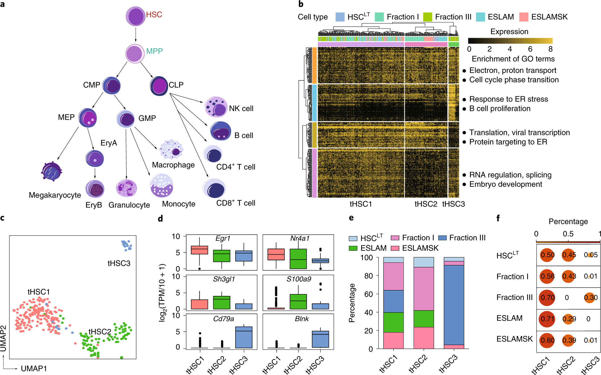 Differentiation of transplanted haematopoietic stem cells tracked by single-cell transcriptomic analysis