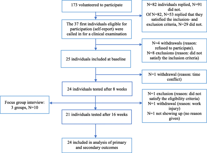 Periodized resistance training for persistent non-specific low back pain: a mixed methods feasibility study