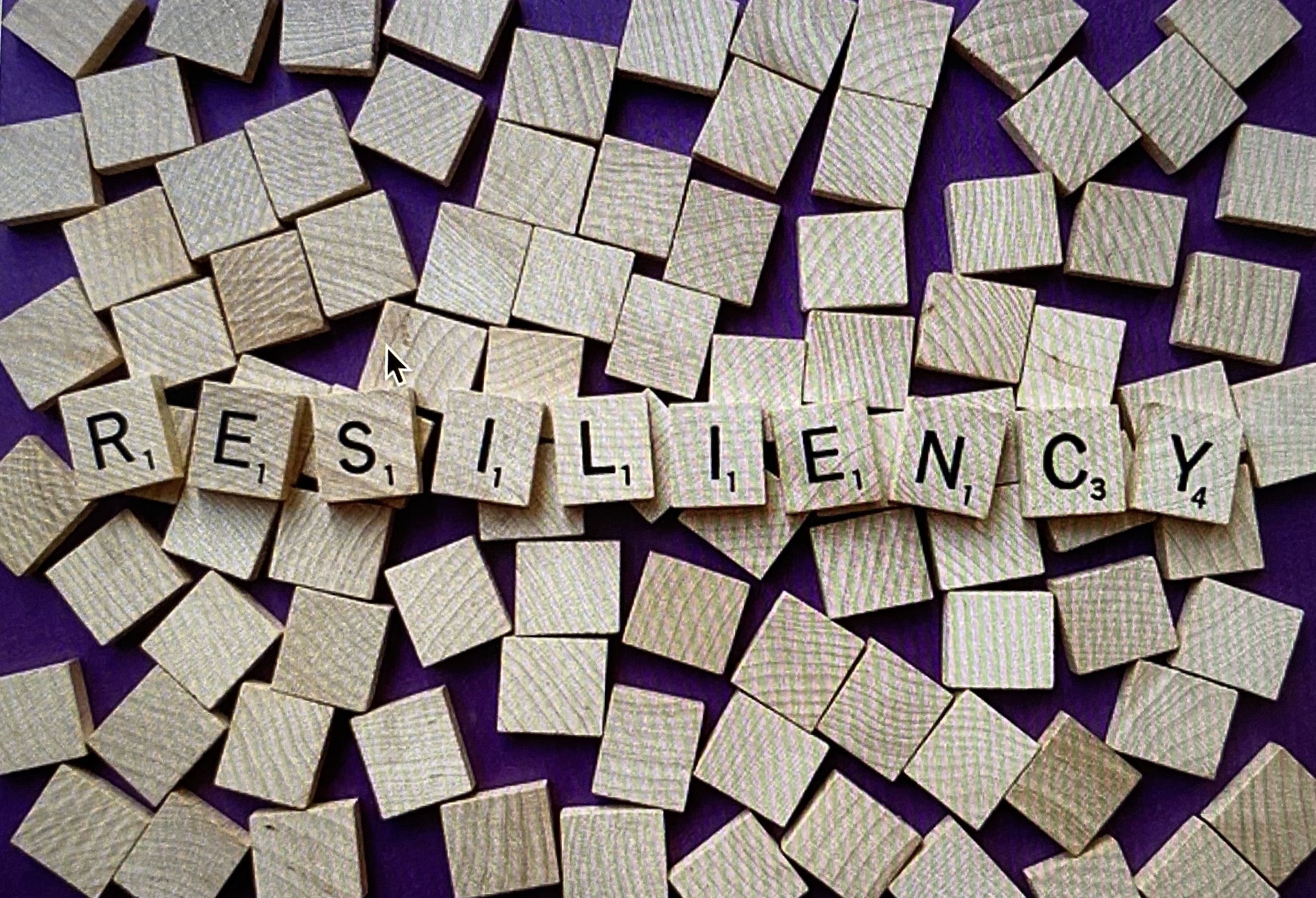 Building resilience to help you manage your chronic pain · A Pain in the Mind