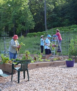 Gardeners Rely on Each Other