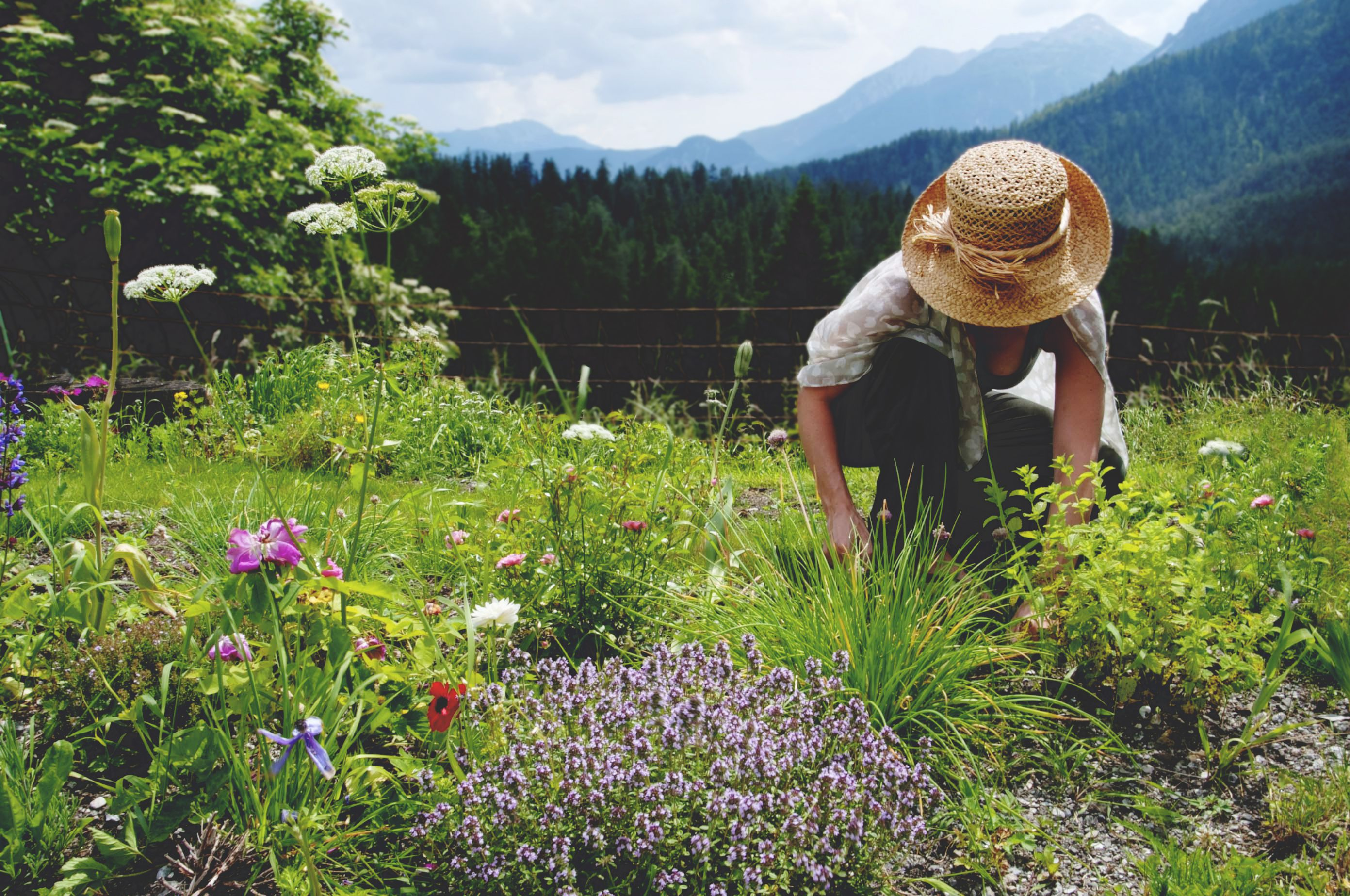 How to Safely Garden and Avoid Hurting Your Back