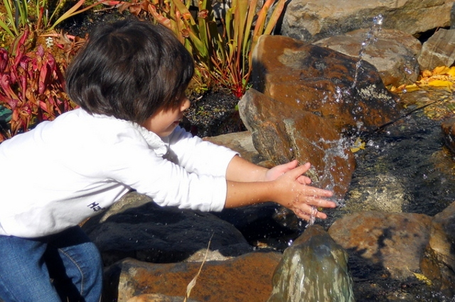 Teaching Kids About Nature to Save the Planet