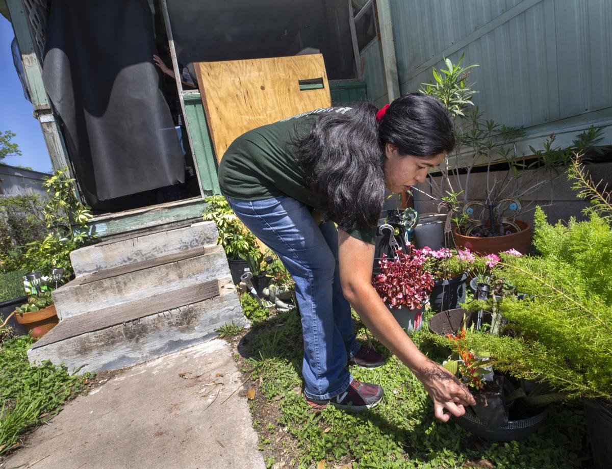Gardening, running can help manage insolation anxiety
