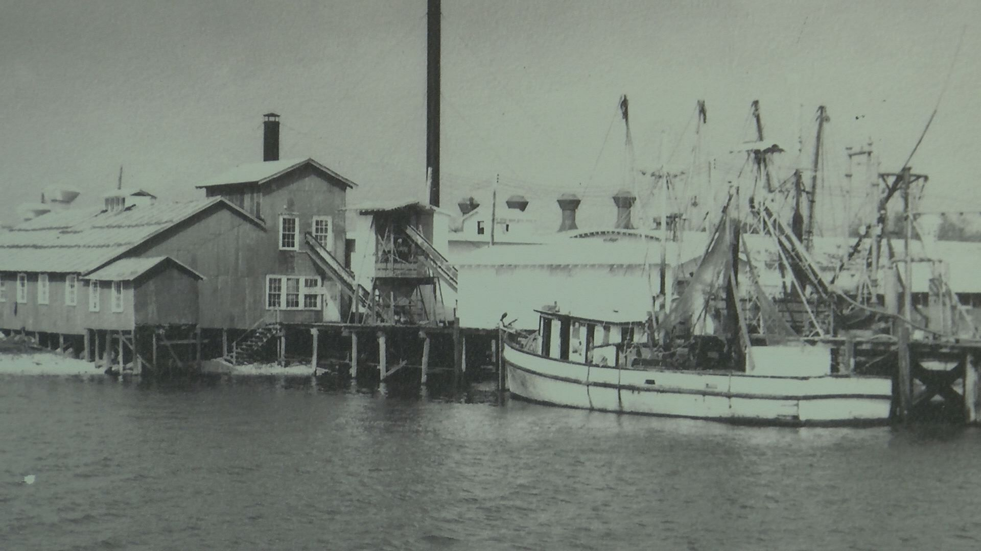 South Mississippi Strong: A thriving seafood industry has deep roots in Biloxi