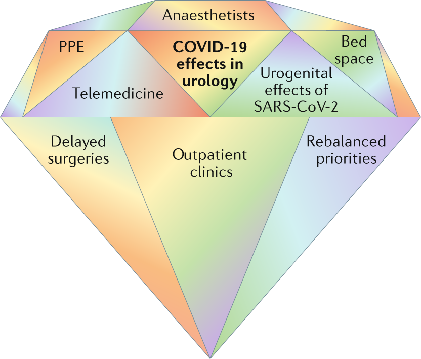 The Multifaceted Long Term Effects Of The Covid 19 Pandemic On Urology