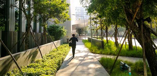 Cities Prepare for Green Initiatives Post-Coronavirus -- Environmental Protection