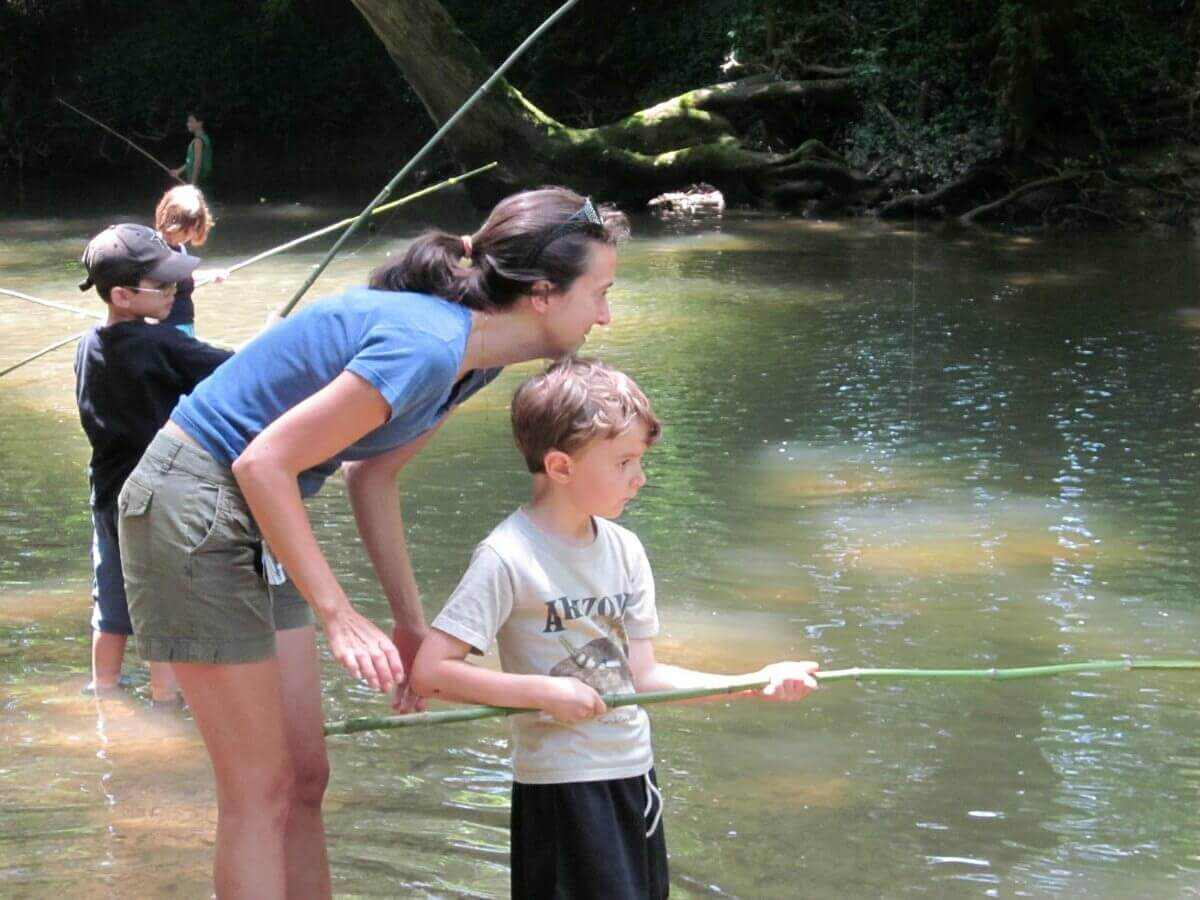 Solutions For Parenting Challenges | Family Focus Blog