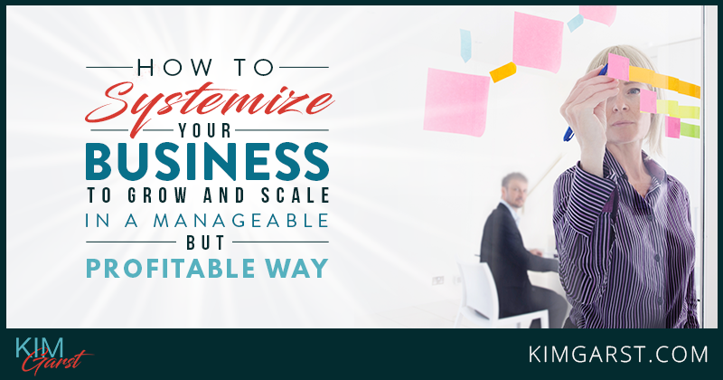 How to Systemize Your Business in a Profitable Way