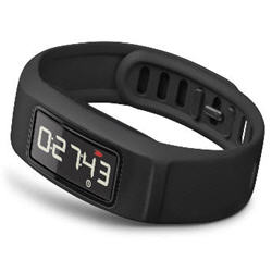 Garmin Vivofit 2 Activity Tracker Fitness Band