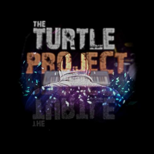 The Turtle Project