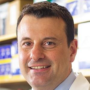 Advances In™ Waldenstrom Macroglobulinemia: Navigating Novel BTK Inhibitors and Beyond